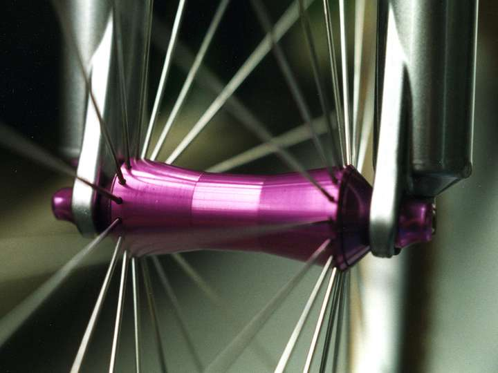 Front Hedgehog hub with straight-pull spokes.