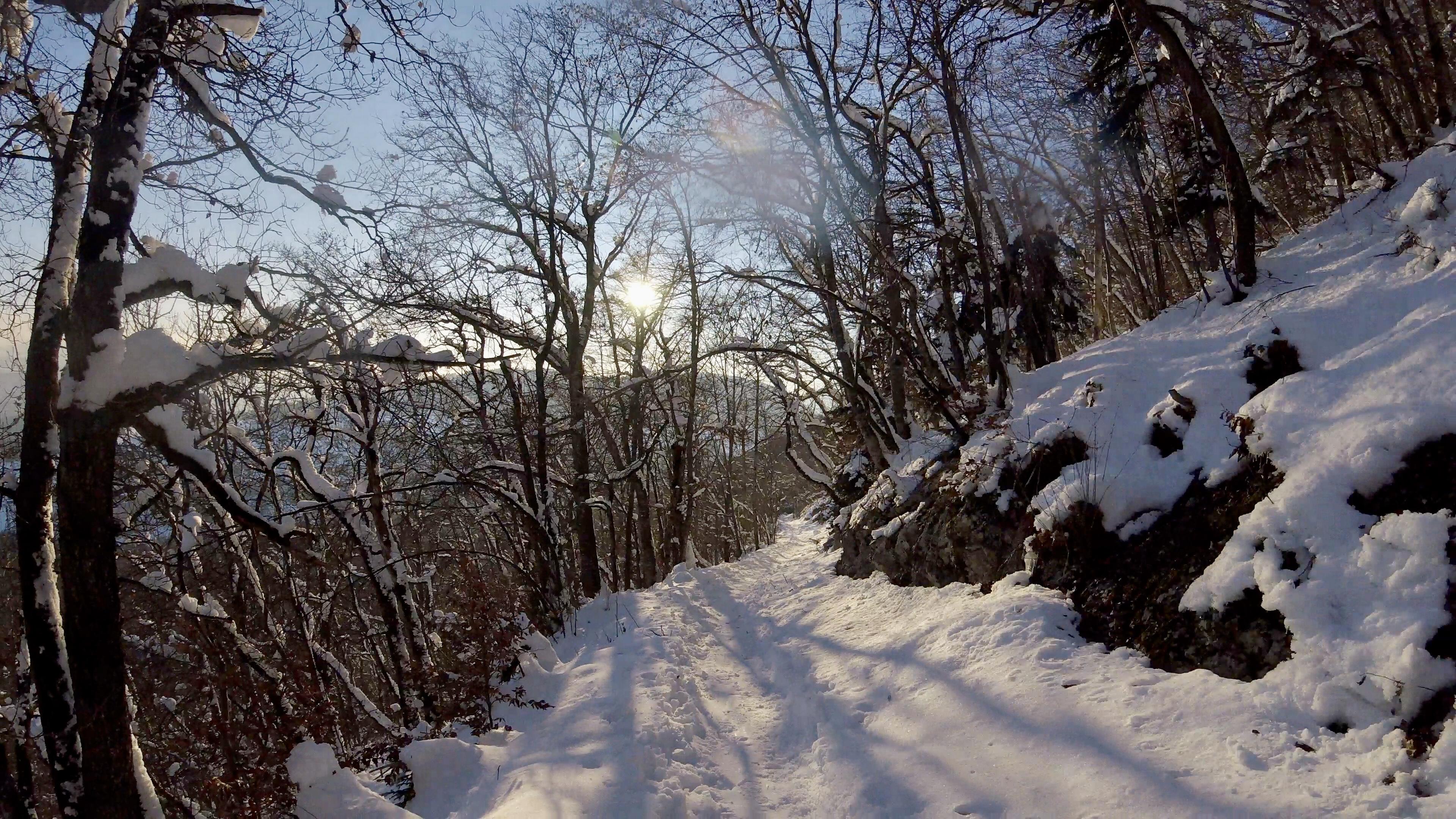 Downhill from the Montagne de Romont.